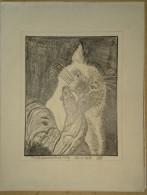 Dessin Au Crayon-Illustrateur -Chat Siamois Et Coq (4) - Dessins