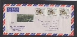 SRI LANKA Letter Brief Postal History Cover LK 006 Air Mail Music Fauna Birds Landscape - Sri Lanka (Ceylon) (1948-...)