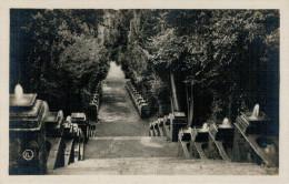 TIVOLI   VILLA D'ESTE    SCALINATA  DEI  BOLLONI          (NUOVA) - Tivoli