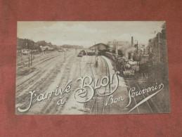 BLOIS 1910   GRUSS AUS    INTERIEUR DE GARE   EDIT  BF MTIL   CIRC OUI - Blois