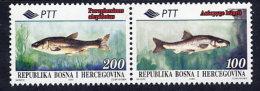 BOSNIA & HERCEGOVINA (Sarajevo) 1995 Fish Pair MNH / **.  Michel 28-29 - Bosnia And Herzegovina