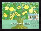 """Carte Maximum De 2001 """" MEILLEURS VOEUX """" En Parfait état. CM - Cartas Máxima"""