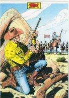 TORINO -  2011 - TEX Contro I Confederatii - - Fumetti