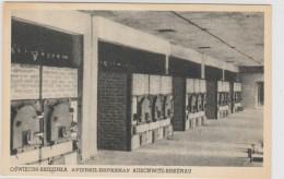 Poland - Oswiecim - Brzezinka - Auschwitz - Birkenau - Judaica - Crematorium Urnaces - Polen