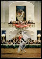 [015] Pferde-Karte 011, Spanische Hofreitschule Wien, Courbette, ~1970 - Caballos