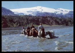 [015] Pferde-Karte 025, Island, Gletscher Eyjafjallajökull, Gel. 1971 - Caballos