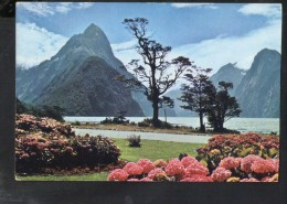 Q1094 MITRE PEAK, MILFORD SOUND, NEW ZELAND - NOT WRITED - PHOTO A. FESLIER - Nuova Zelanda