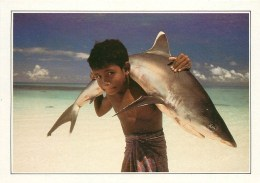 CPSM Maldives-Requin à Pointe Blanche     L2102 - Maldives