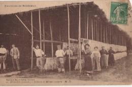 CPA BEGLES 33 - Sècherie De Morues Couverte - Environs De Bordeaux - France