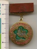 Badge With Mineral Jasper --USSR -  №3 - Meteorites