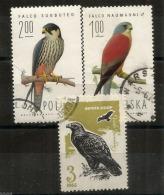 Faucon Hobereau,Faucon Crécerellette,Aigle Ravisseur.   3 Timbres Oblitérés, Obliteration Ronde - Eagles & Birds Of Prey