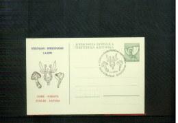 Jugoslawien / Yugoslavia / Yougoslavie 1990 Strunjan Mushrooms Postcard - Pilze