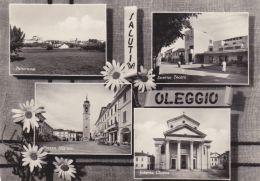 1957-Novara Saluti Da Oleggio ,cartolina Viaggiata - Novara