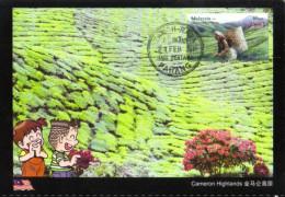 18D: Malaysia Cameron Highland Tea Garden (beverage Drink) Maximum Card Maxicard MC - Unclassified