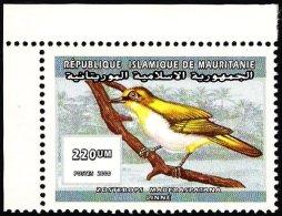 Mauritania 2000 Bird - Malagasy White-eye - Zosterops Maderaspatanus - Oiseaux
