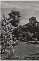 Locarno Im Frühling/Spring - 2827 - TI Tessin