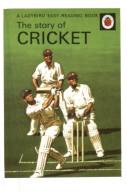 (102) Cricket - Cricket