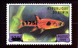 """Bénin 2005 ( Poisson Béninois """"Acanthuridae"""" -  )  - Luxe **  TRES RARE - Poissons"""