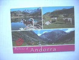 Andorra Petons - Andorra
