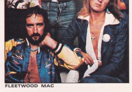 IMAGE  THE ROCK AND POP COLLECTION PANINI  FLEETWOOD MAC - Andere