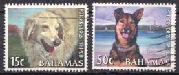 Bahamas Used Stamps - Cani