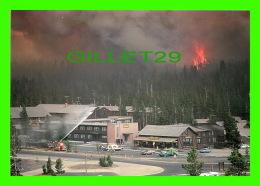 YELLOWSTONE, WY - NORTH FORK FIRE-OLD FAITHFUL 1988 - YELLOWSTONE NATIONAL PARK - PHOTO, JEFF HENRY - - Yellowstone