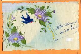 PCJ-18  Oiseau Et Fantaisie. Circulé Sous Enveloppe - Vogels
