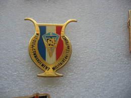 Pin´s Musique Du Commandement Militaire De L´ILE DE FRANCE, 8eme REGIMENT DE TRANSMISSIONS - Militaria