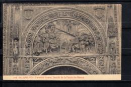 SALAMANCA.CATEDRAL NUEVA. DETALLE DE LA PUERTA DE RAMOS  ,  NO CIRCULADA. 1910 - Salamanca