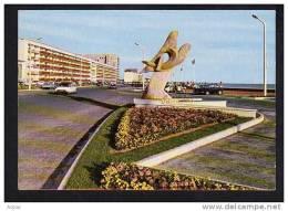 85  ST JEAN DE MONTS    Oiseaux De Mer Et Boulevard De La Plage - Saint Jean De Monts