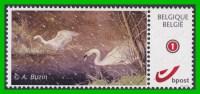 BUZIN - Cygne - MPO (Mechelse Postzegelkring Opsinjoor) - 1-12-2012 - Papier Autocollant - Private Stamps