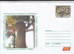 42080- TEBEA- HOREA'S SESSILE OAK, PEASANT UPRISING, COVER STATIONERY, 2004, ROMANIA - Ganzsachen