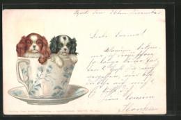 Künstler-Lithographie Theo Stroefer Ser. VII Nr. 5512: Pekinesen In Tasse - Künstlerkarten