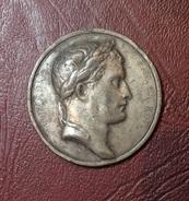 Médaille.  Napoléon I - COLONNE DE LA GRANDE ARMÉE - 1805 - Epreuve En étain - Royaux / De Noblesse