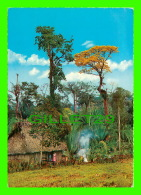 GUATEMALA C.A. - LANDSCAPE WITH TYPICAL HOUSE - TRAVEL - - Guatemala
