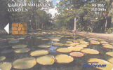 MAURITIUS ISL. - Pamplemousses Garden 2, Chip GEM3.1,  Tirage %30000, 04/03, Used - Mauritius