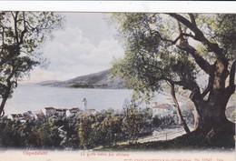 Postcard Ospedaletti Liguria Italia Imperia Cartolina Postale Bordering Bordighera Sanremo Seborga And Vallebona - Imperia