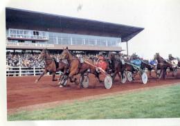 La Capelle Champ De Courses Calendrier 1999 4.8/3.2 - Calendriers