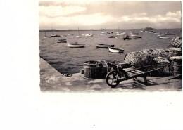 CPSM (petit Format) CARANTEC Le Port - Carantec