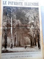 Le Patriote Illustré N°9 Du 01/03/1931 Malines Woluwe Bruxelles Bernheim Yser Fort Myers Edison Syrie Alep - Vieux Papiers