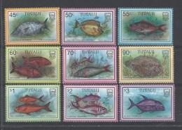 Vissen Tuvalu - Vissen