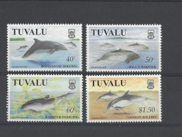 Dolfijnen Tuvalu - Dolfijnen
