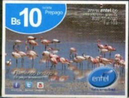 Bolivia 2015 PREPAGO ENTEL. Flamenco Andino. See Description. - Oiseaux
