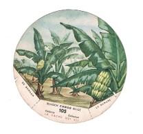Belgisch Congo Belge Collectie La Vache Qui Rit  105 - Autres Collections