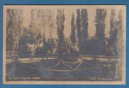 301464 / Pernik -  CITY GARDEN , DER STATGARTEN ,  Bulgaria Bulgarie Bulgarien Bulgarije - Bulgaria