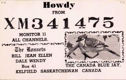Blue Jay On QSL Card From Bill Rosset, Kelfield, Saskatchewan Canada, XM341475 (year 1968) - CB