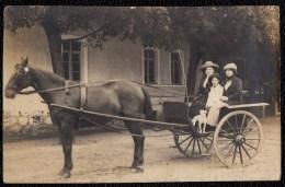 SUPERB POLISH 1915 PHOTO CARD - POLAND - ATTELAGE - CHIEN - CHEVAL - FILLE - Please Read Reverse Side - Non Classés