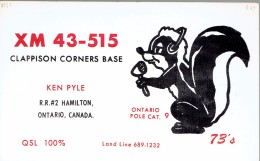Squirrel Ecureuil On QSL Card From Ken Pyle, Hamilton, Ontario, Canada, XM 43-515 (1969) - CB