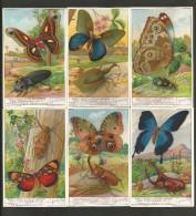 LIEBIG Sammelbilder  (03) , 6 Stück - Papillons Et Scarabees - - Liebig