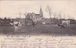 Haekendover - Environs De Tirlemont - Tienen